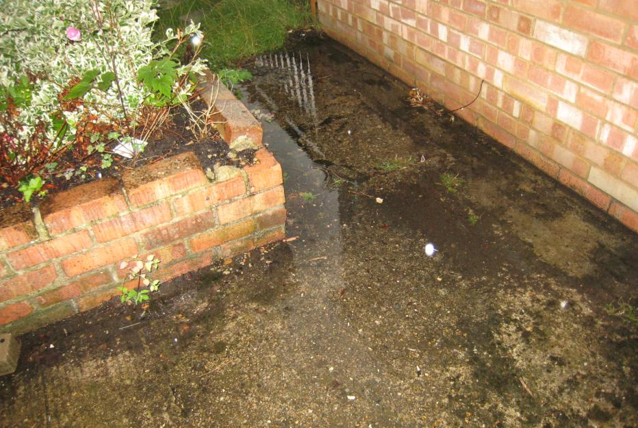 how to stop huntsmen coming through drains